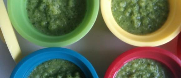 voedselintroductieschema-peer-voedingadvies-rapley-eerste-hapjes